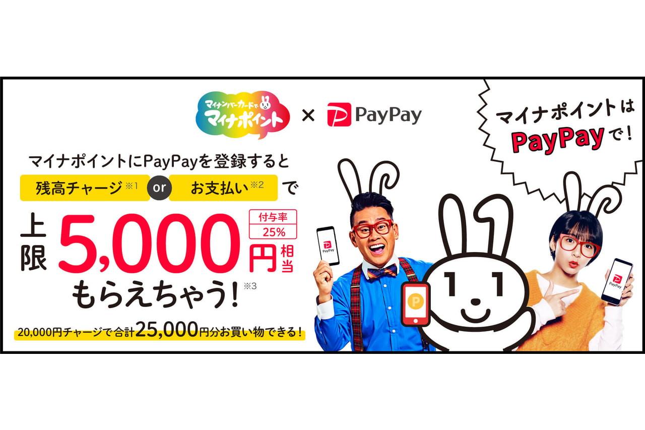 ポイント キャンペーン マイナ paypay